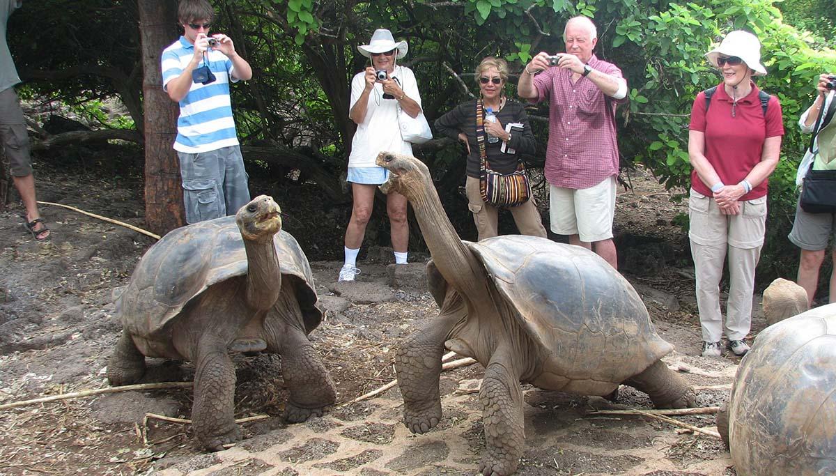 GalapagosTortoiseTourists